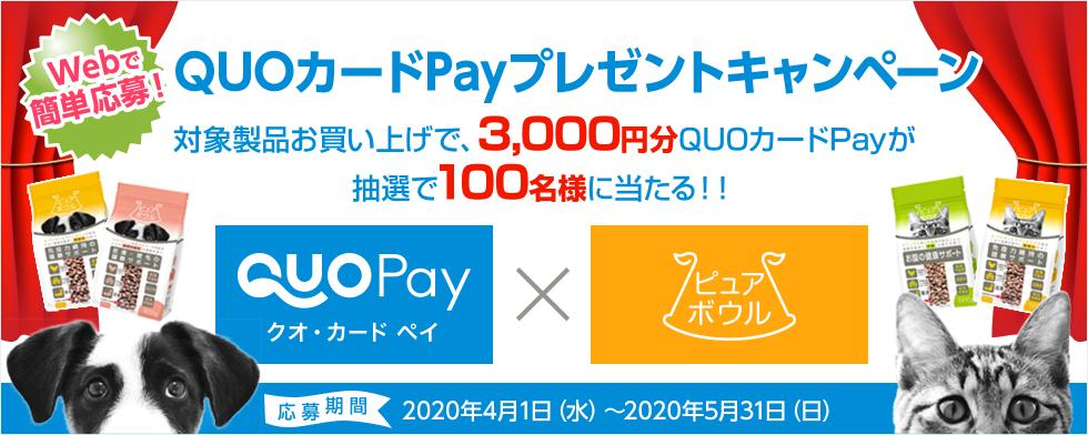 webで簡単応募 QUOカードPayプレゼントキャンペーン 対象製品をお買い上げで、QUOカードPay3,000円分を抽選で100名様に当たる!
